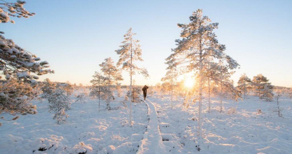 Spedire in Finlandia