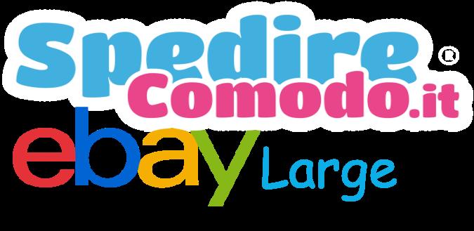 Spedizioni ebay Large